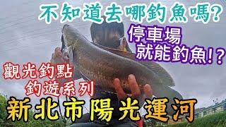 【路亞】停車場就能釣魚!?  #觀光釣點系列-陽光運河   都市釣魚 泰國鱧 新北市 三重