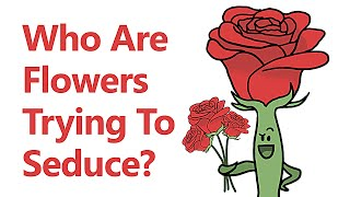 Who Are Flowers Trying To Seduce? thumbnail