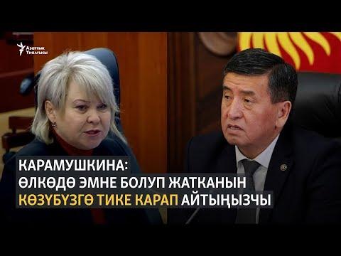 Депутат Карамушкина президенттен көзмө-көз сүйлөшүүнү талап кылды