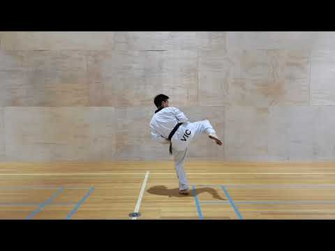 how-to-do-a-spinning-roundhouse-kick-(tornado-kick)