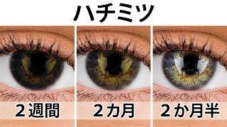 瞳の色を変え、たった2週間で視力をアップさせる簡単な3つの秘訣って、本当なの!?