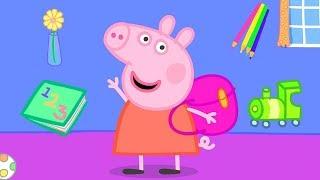 Peppa Pig en Español Episodios completos   Números 🎓Regreso al colegio 🚌 HD   Pepa la cerdita