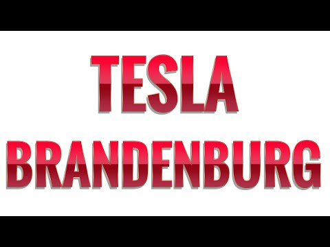 Bekommt Tesla 270 Mio. Euro Förderung? Gericht stoppt Tesla Rodungsarbeiten!