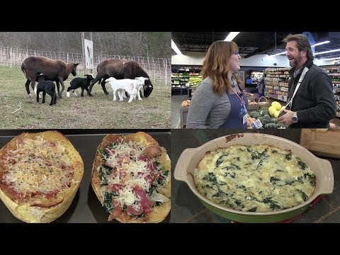 Spaghetti Squash 2 Ways and Spinach/Artichoke Dip  (Episode