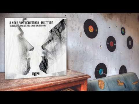 Download D-Nox, Santiago Franch - Multitude (Jamie Stevens Remix)