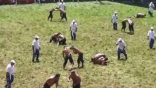 217-24.07.2016-kırkpınar güreşi-(ERHAN YILMAZ-kim maçı)-(UFUK YANIK-kim maçı