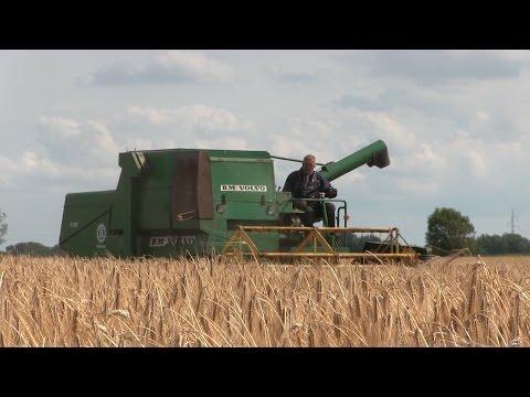 Barley Harvest 2015 | With Old Volvo BM S830 Combine