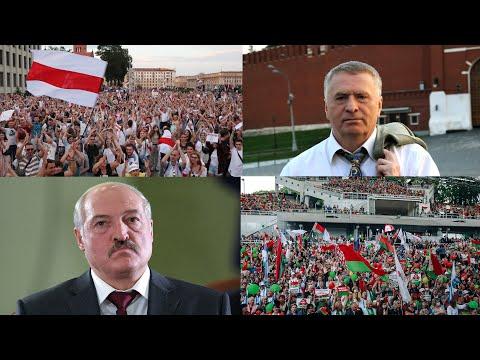 Жириновский против Лукашенко: комментарий к видео Жириновского у посольства Беларуси после выборов