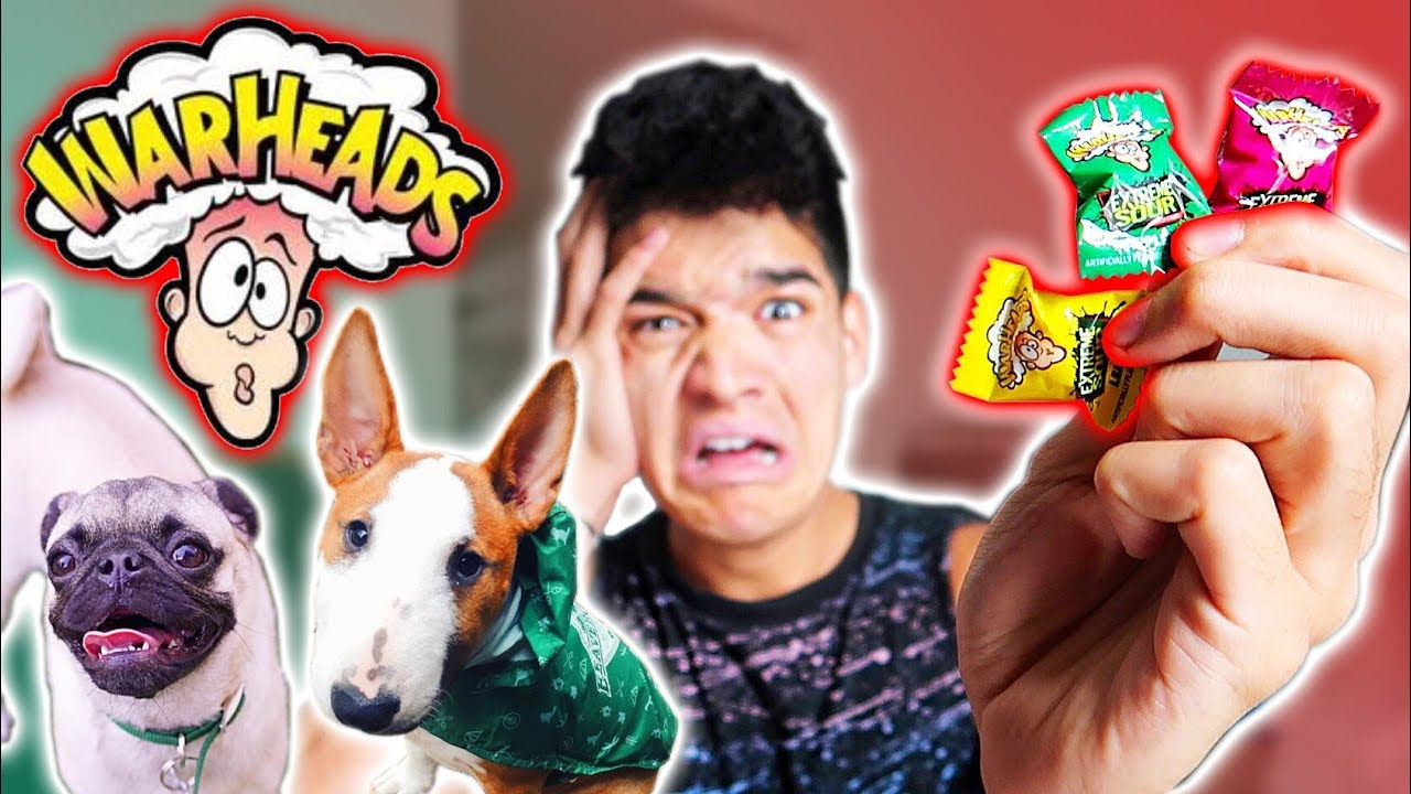 puppies-vs-sour-candy