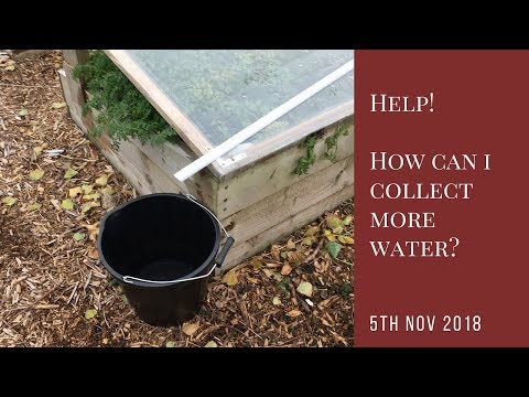 Help! How Can I Collect More Water?