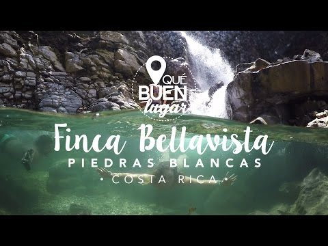 Costa Rica: Finca Bellavista - Puntarenas ¡Qué buen lugar! HD