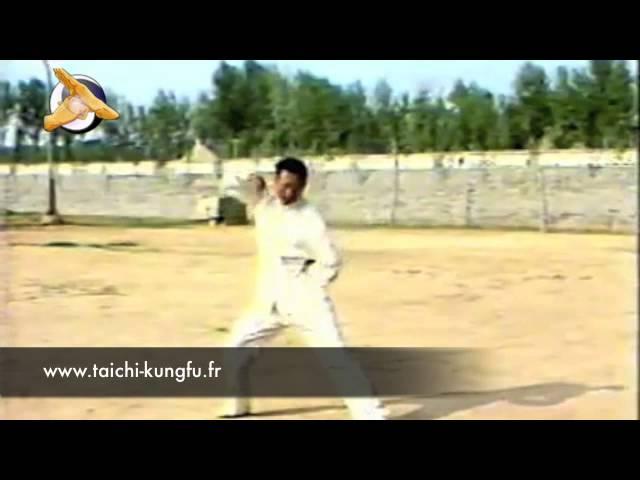 [Chen - Xinjia] Wang Xi An - Taiji (Taichi) style Chen Xinjia (Erlu)