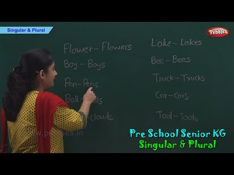 Singular and Plural | Singular & Plural Nouns | Phonics | Pre School Kindergarten