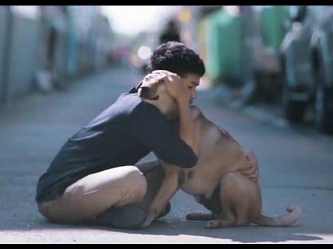Joven Da A Perros Callejeros Su 'Primer Abrazo' Y Así Reaccionan