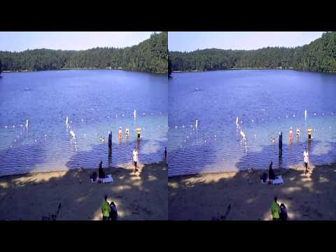 Walden Pond 3D
