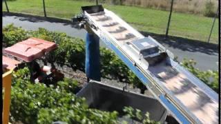 Oxbo 6220 Trunk Shake Grape Harvester