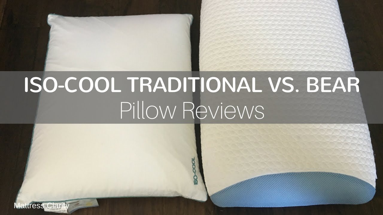 pillow reviews iso cool traditional vs bear