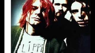 Nirvana clips - pen cap chew