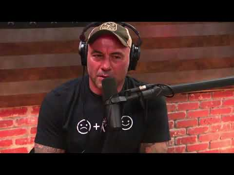 Joe Rogan - Donald Trump Jr. Wants to Be on the Podcast?