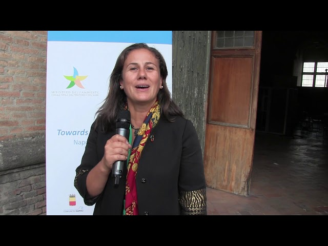 Towards COP21: Youth Event