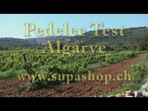 Pedelec Test