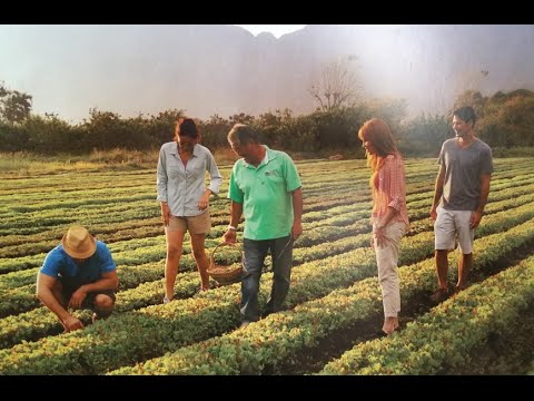 Farm-to-Leader Movement with Dean Okimoto