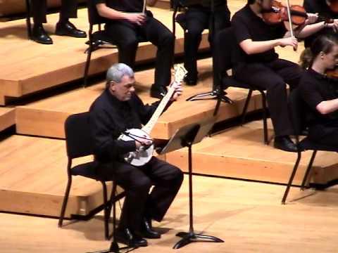 Banjo Kazooie By University Of Maryland Gamer Symphony Orchestra
