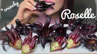 ASMR ROSELLE HIBISCUS PLANT | RIBENA FRUIT | EATING SOUNDS (No Talking)