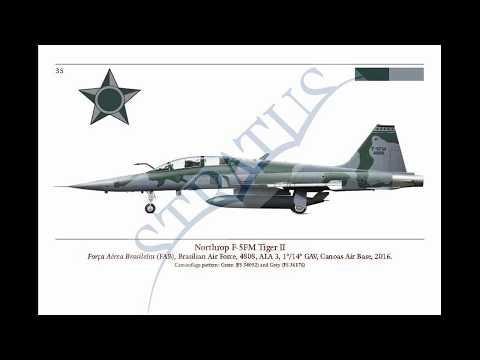 F-5E/F Tiger II book preview