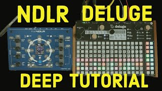 Conductive Labs NDLR and Synthstrom Deluge deep tutorial. MIDI, LFOs and more (4K)