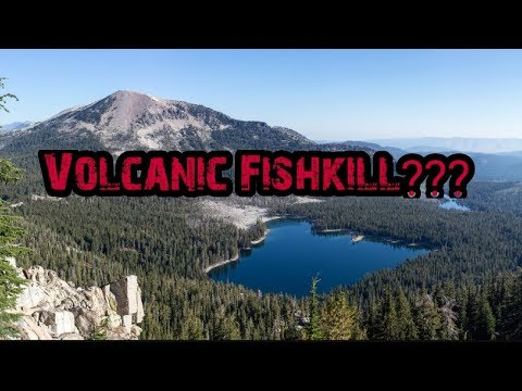 Is Horsehoe Lake Fishless? |  Mammoth Lakes CA |  2019
