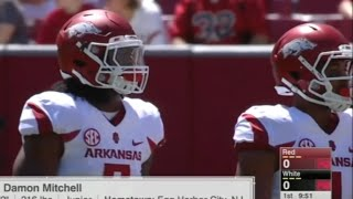 Arkansas Razorbacks Football Spring Game 2016