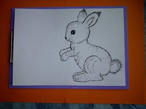 Zeichnen lernen für Anfänger. Wie malt man einen Hasen (Kaninchen). Drawing an Easter Bunny