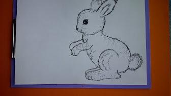 Osterhase zeichnen und basteln f r ostern hase kaninchen youtube - Osterhase zeichnen ...