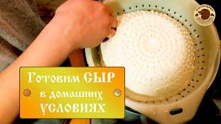 Приготовление сыра в домашних условиях ДЕРЕВЕНСКИЙ СЫР