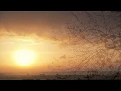Wolfgang Amadeus Mozart - Symphony No.40 in G Minor K.550 - (1) Molto Allegro