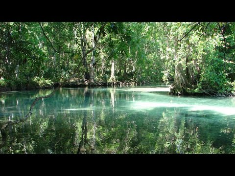 Incredible Places in Florida You May Never Have Heard Of