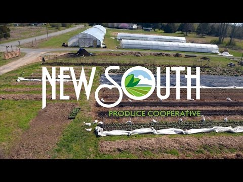 NewSouth Farms Produce Cooperative