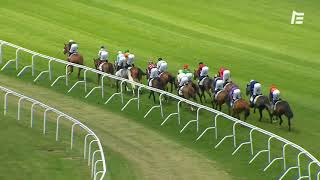 Vidéo de la course PMU PRIX DU HARAS DE JARDY
