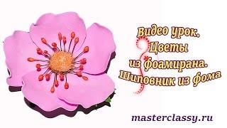 Видео урок. Цветы из фоамирана. Шиповник из фома