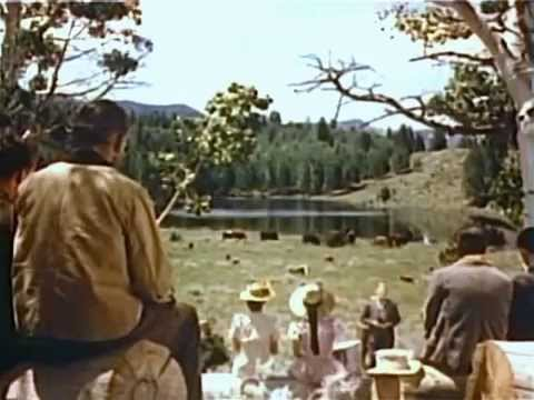 The Big Cat (1949) ADVENTURE