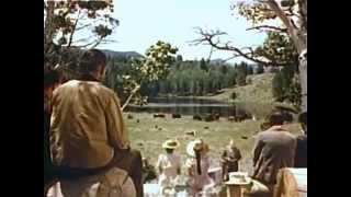 The Big Cat (1949) ADVENTURE