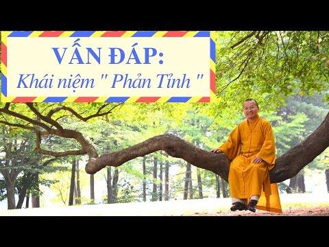 Vấn đáp: Phản tỉnh, bốn đôi tám vị, hộ niệm, cúng 49 ngày, Phật A Di Đà