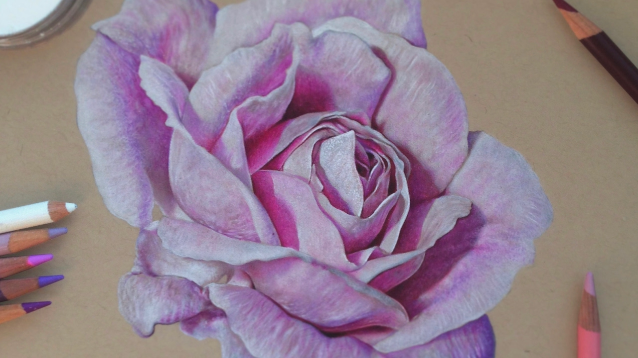 Drawing a Realistic Rose | Colored Pencils - YouTube