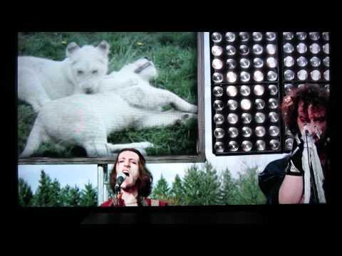 Cute Fight - Toronto Zoo (Better Audio)