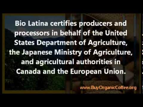Panama Wholesale Organic Coffee