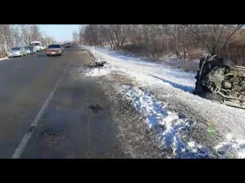 Пятеро погибших: ДТП в Белогорском районе Амурской области