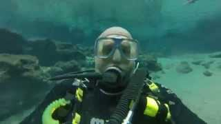 Cave Diving Ginnie Springs Florida
