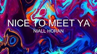 Niall Horan - Nice To Meet Ya Traduzione Italiano