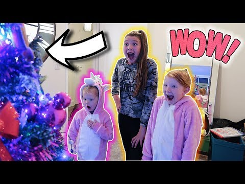 THE BIG CHRISTMAS TREE REVEAL!